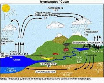 http://www.zo.utexas.edu/courses/thoc/hydrological_cycle.jpg