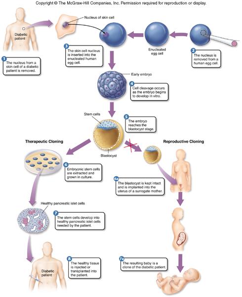 10 Genomics